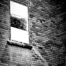 GinaMiranda-Brick walls