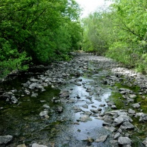 GinaMiranda-Credit River