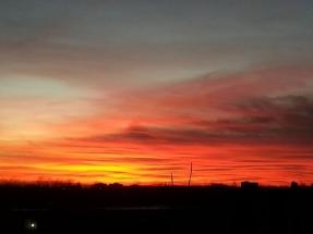 GinaMiranda-Firey skies