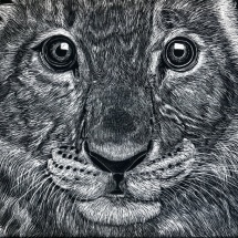 Gina Miranda-Lion Cub