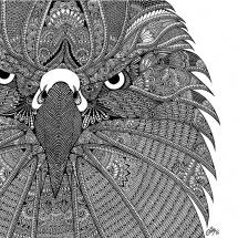 GinaMiranda-Eagle-lr