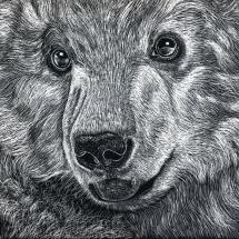 GinaMiranda-Polar Bear