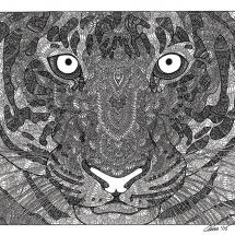 GinaMiranda-Tiger