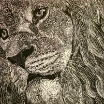 GinaMiranda-Lion