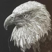 Golder Eagle